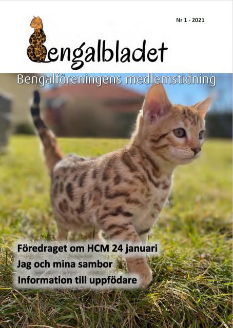 bgbladet1